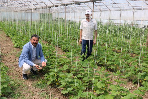 Bayramiç Belediye Başkanı Mert Uygun, tüm çiftçilerin 14 Mayıs Dünya Çiftçiler Günü'nü kutladı.